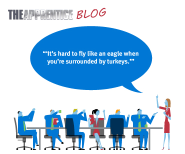 Apprentice-blog-episode-6